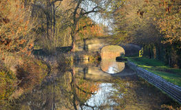 Autumn Leaves Llangollen Canal Fotografering för Bildbyråer