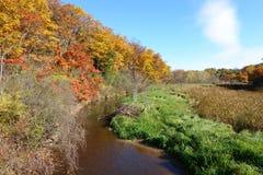 Autumn Leaves a lo largo de la cala de la muela fotografía de archivo