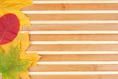 Autumn leaves lying on a bamboo mat Royalty Free Stock Image