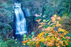 autumn leaves and the main falls at buskill stock photography