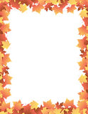 Autumn Leaves [maple] Border
