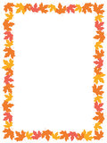 Autumn Leaves [maple] Border Stock Photos