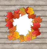 Autumn leaves maple with copy space, wooden textur Stock Photos