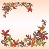 Autumn leaves memo page. Autumn leaves montage for scrapbook or memo page Stock Image
