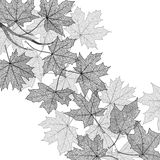Autumn leaves monochrome template Royalty Free Stock Photos