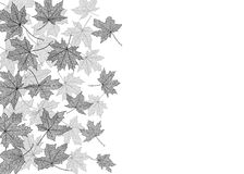 Autumn leaves monochrome template Stock Photography