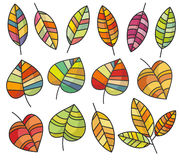 Autumn leaves. Mosaic. Set Stock Photos
