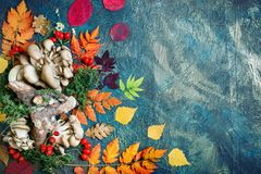 Autumn leaves, mushrooms and berries on a dark background. Autumn background with copy space. Royalty Free Stock Image