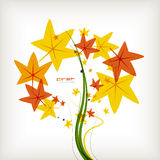 Autumn leaves nature vector background Stock Image