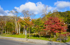 Autumn leaves near the Nikko yumoto onsen in Nikko, Japan Stock Photo