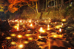 Autumn leaves in the night Royalty Free Stock Photos