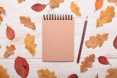 Autumn leaves, notebook and pencils on a white wooden background. Flat lay, top view, copy space stock image