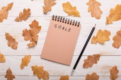 Autumn leaves, notebook and pencils on a white wooden background. Flat lay, top view, copy space royalty free stock image