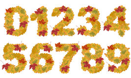 Autumn leaves numbers Stock Photos