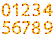 Autumn leaves numbers. Set of numbers with autumn leaves Stock Images