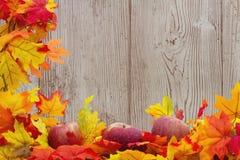 Autumn Leaves och äpplebakgrund Royaltyfri Bild
