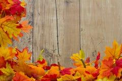 Autumn Leaves och pumpabakgrund Arkivbild