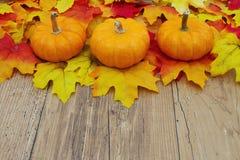 Autumn Leaves och pumpor på en väderträbakgrund Arkivfoto