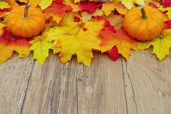 Autumn Leaves och pumpor på en väderträbakgrund Royaltyfri Foto