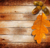 Autumn leaves on the old grunge wooden background Royalty Free Stock Photos
