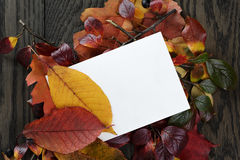Autumn leaves on old oak table with paper card Royalty Free Stock Images