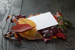 Autumn leaves on old oak table with paper card Royalty Free Stock Photography