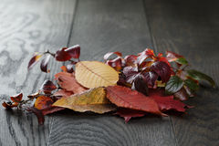 Autumn leaves on old oak table Royalty Free Stock Photos