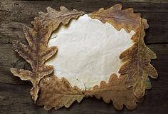 Autumn leaves and old paper Stock Photo