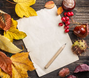 Autumn leaves. On the old paper sheet Royalty Free Stock Photography
