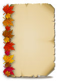 Autumn leaves on an old parchment Stock Images