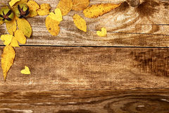 Autumn leaves on old wood Royalty Free Stock Images