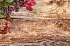 Autumn leaves on old wood Stock Image