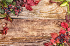 Autumn leaves on old wood Stock Photos