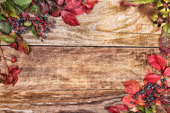 Autumn leaves on old wood Royalty Free Stock Photos