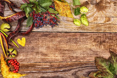 Autumn leaves on old wood Stock Photo