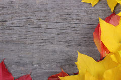 Autumn leaves on old wooden background Stock Photos