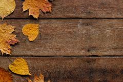 Free Autumn Leaves On Wooden Background With Copy Space. Wallpaper For September 1. Stock Photography - 148297002