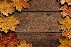 Free Autumn Leaves On Wooden Background With Copy Space. Wallpaper For September 1 Royalty Free Stock Image - 160483826