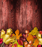 Autumn Leaves over a Natural Dark Royalty Free Stock Image