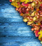 Autumn Leaves over a Natural Dark Wooden background. Stock Images