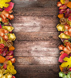 Autumn Leaves over a Natural Dark Wooden background. Stock Image
