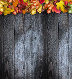 Autumn Leaves over a Natural Dark Wooden background Stock Photography