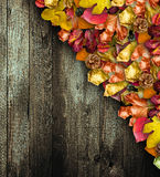 Autumn Leaves over a Natural Dark Wooden Stock Photography