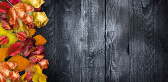 Autumn Leaves over a Natural Dark Wooden Stock Photos