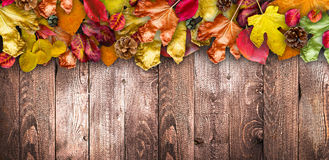 Autumn Leaves over a Natural Dark Wooden background. Old dirty wood tables or parquet Stock Photos
