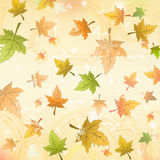 Autumn leaves over old paper retro background Royalty Free Stock Images