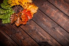 Autumn Leaves over old wooden background. Vintage autumn fallen leaves on the old wooden table Royalty Free Stock Image
