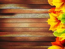 Autumn leaves over old wooden. plus EPS10 Stock Photos
