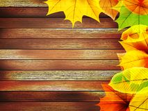 Autumn leaves over old wooden. plus EPS10 Stock Photo
