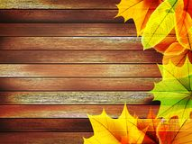 Autumn leaves over old wooden. plus EPS10 Royalty Free Stock Photo